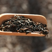 Golden Tips, Jungpana Darjeeling tea, a review