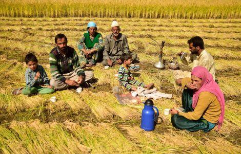 Tea Time in Kashmir (Sajad Rafiq)